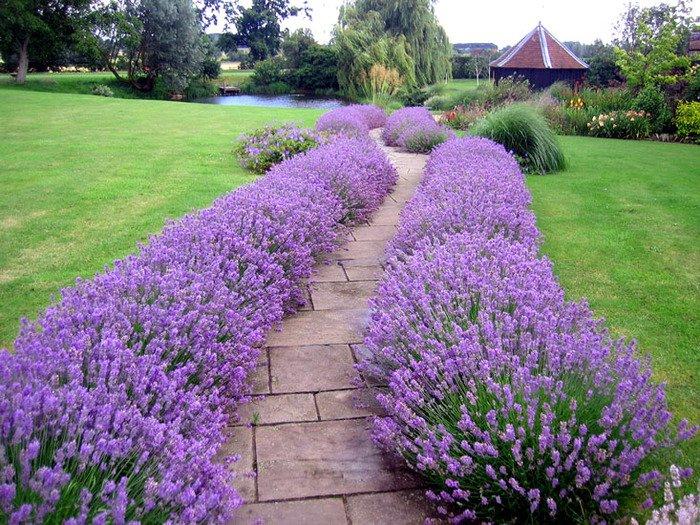 Какому материалу для садовых дорожек отдать предпочтение?