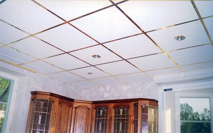 Потолок навесного типа