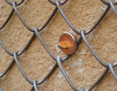 Подготовка поверхности кладки под штукатурные работы
